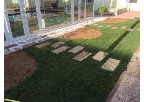 Landscape work in Dubai - Soft-landscape maintenance in Dubai