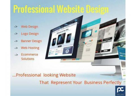Best Way to Growth Your Business Online-Professional Website Development, Perfonec
