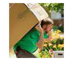 ARA MOVERS AND PACKERS AL AIN#0521942209