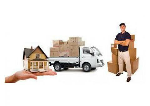 BEST MOVERS 050 3362741