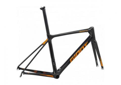 2019 Giant TCR Advanced Pro Frameset Road Bike - (Fastracycles)