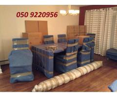 Dubai Professional Movers - 050 9220956